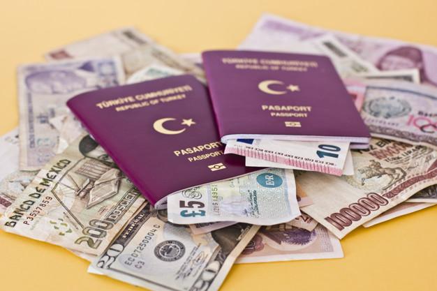 外商投資獲得土耳其國籍